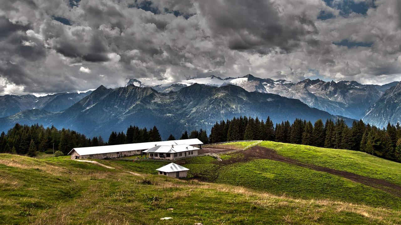 12079 Renzo Caliari malga Movlina Dolomiti di Brenta ghiacciaio di Lares sullo sfondo gruppo del Care Alto