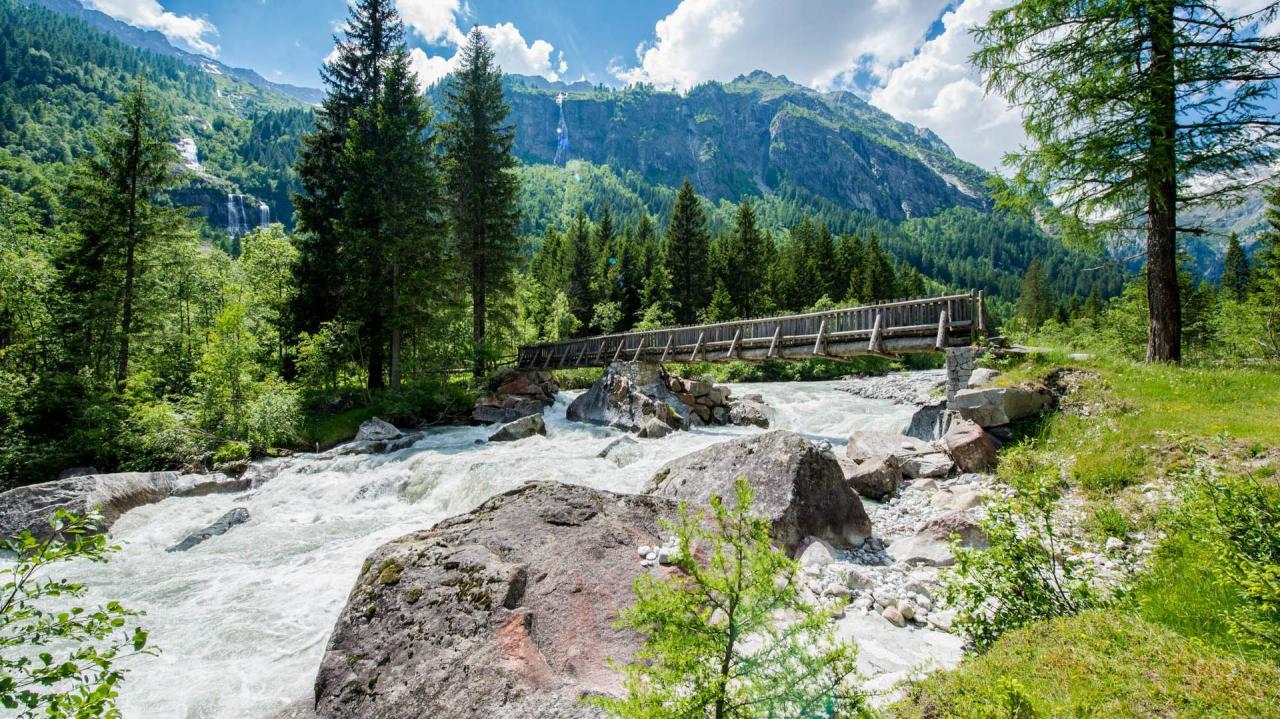 Parco Naturale Adamello Brenta a Madonna di Campiglio Pinzolo Val Rendena