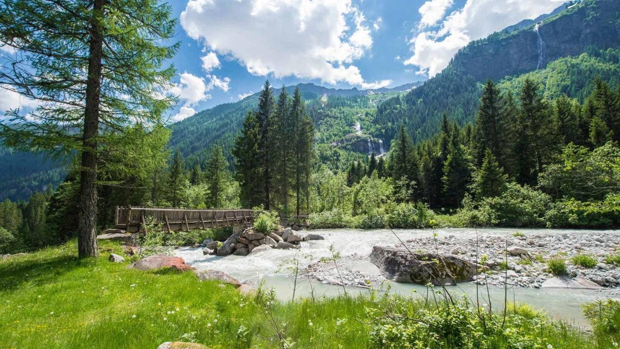 Pescare e cercare funghi in Trentino Val Rendena